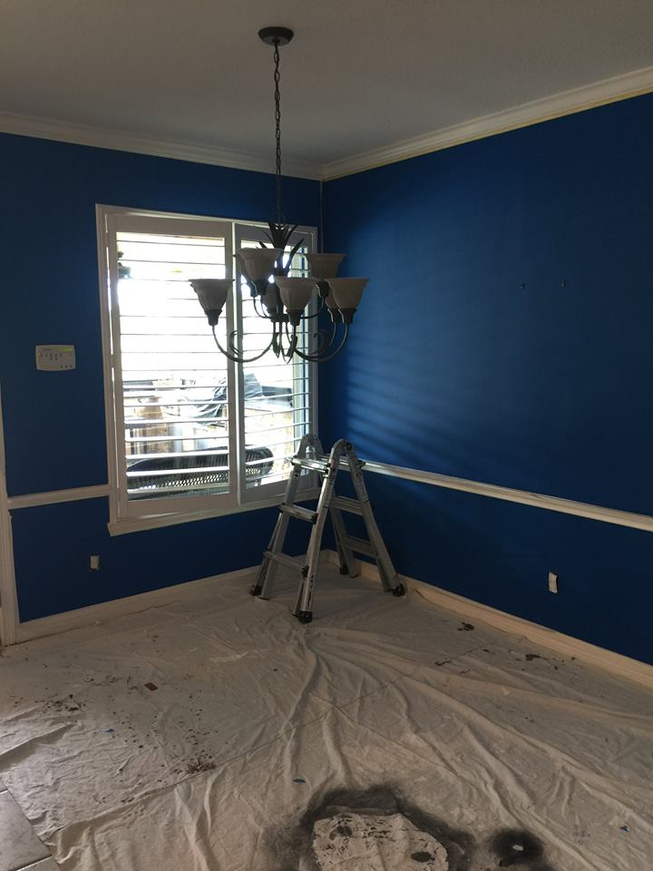 interior painting allburn painting